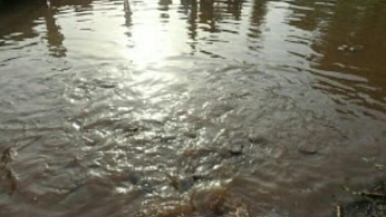 Erin Ayonigba Sacred Fish River